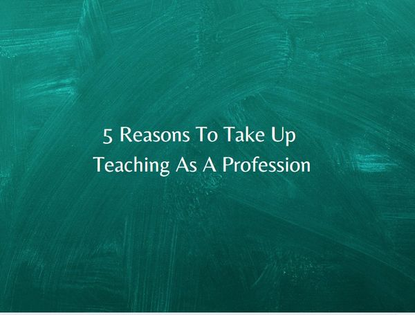 5 Reasons To Take Up Teaching As A Profession